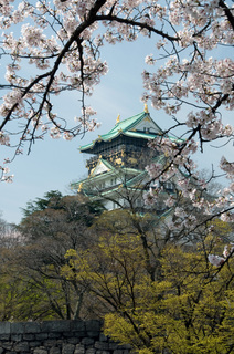 大阪城と桜.jpg